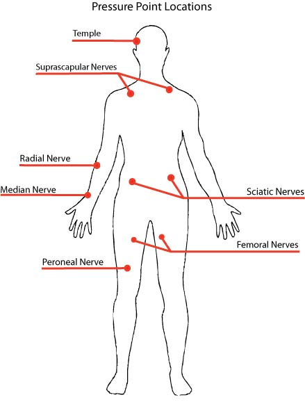survival series part 1 - pressure points and how to use them, Muscles