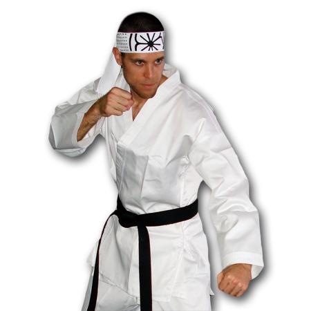 Adult Karate Costume  sc 1 st  KarateMart & Adult Karate Costume - Karate Kid Halloween Costume - Unique Karate ...