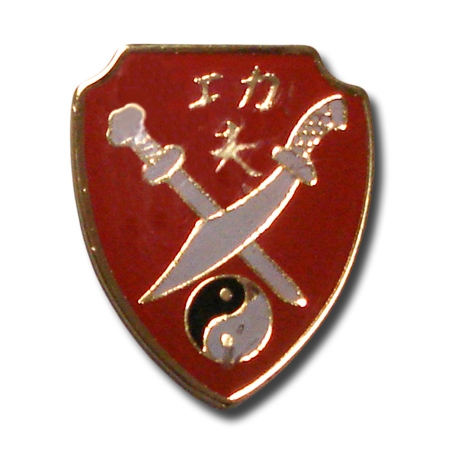 Pin - Kung Fu Shield