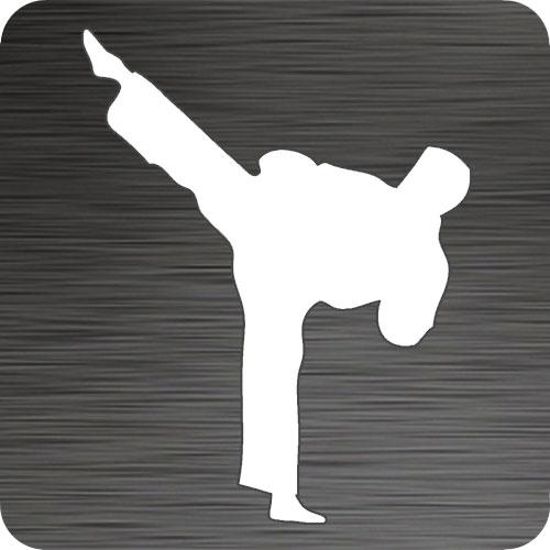 Gallery For > Taekwondo Kick Silhouette
