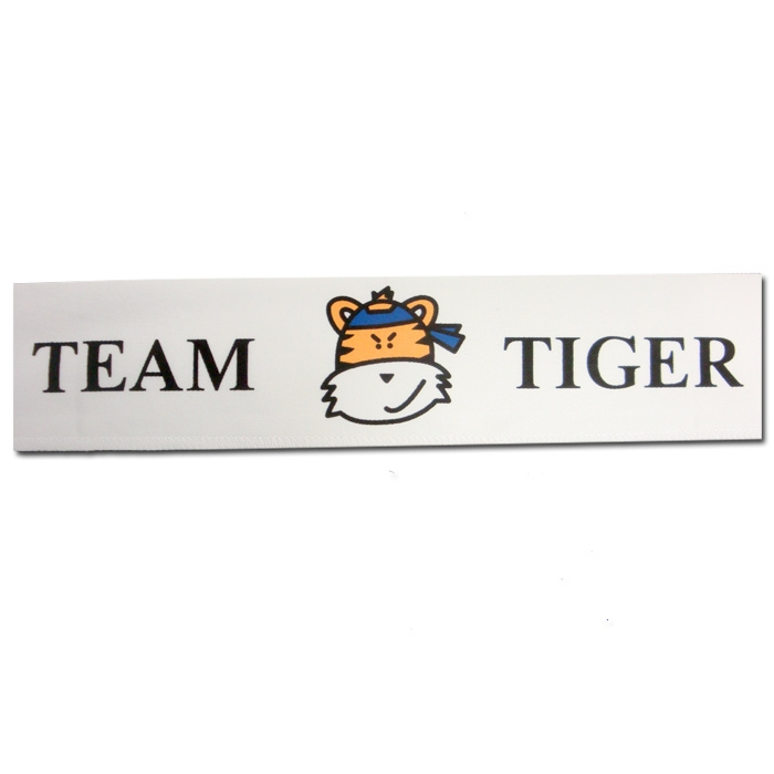 Team Tiger Headband - Kids Karate Tiger Headbands ...