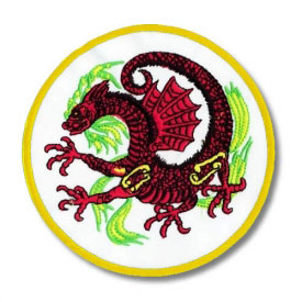 Chinese Red Dragon Patch