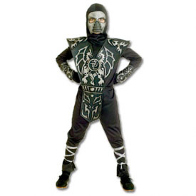 Ice Dragon Ninja Costume