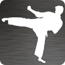 Karate Sidekick Vinyl Decal
