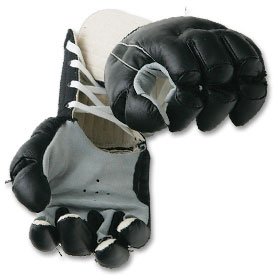 Kempo / JKD Gloves