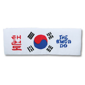 Korean Flag TKD Headband