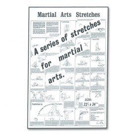 Martial Arts Stretches Poster