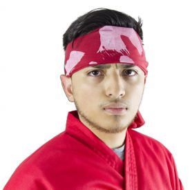Spiritual Strike Kendo Headband (4 Left In Stock)