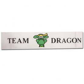 Team Dragon Headband (9 Left In Stock)