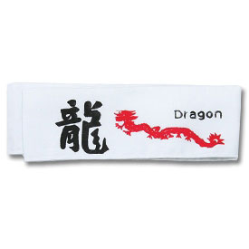 White Dragon Headband