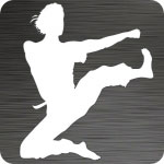 Flying Kick Vinyl Decal
