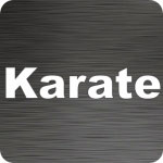 Karate Text Vinyl Decal